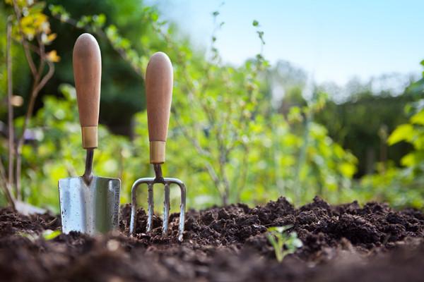 gardening-van-houtte-coffee_emag_article_large