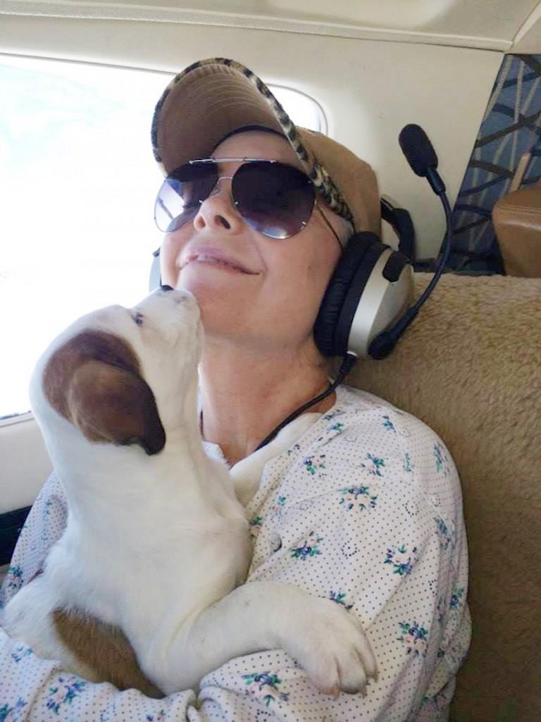 shelter-dog-airplane-transport-wings-of-rescue-yehuda-netanel-8-768x1024