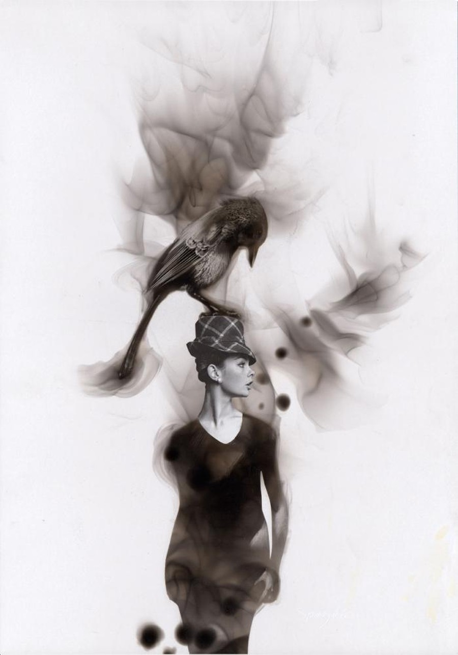 Steven-Spazuk-Bird-Paintings-with-Soot-986326